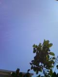 青いなぁ〜