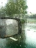すごい雨です