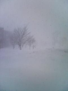 吹雪になりました…