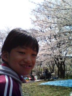 今日も森林公園の桜さんぽ