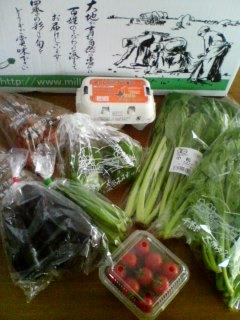 無農薬野菜のお試しセット