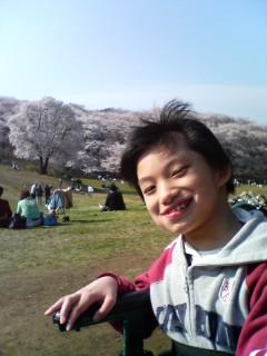 桜・森林公園