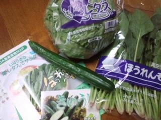 応援!お野菜