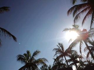 初めての沖縄